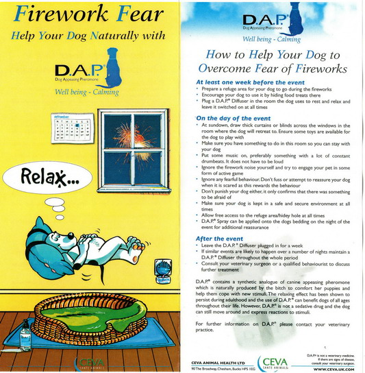 FIREWORKS DOG a