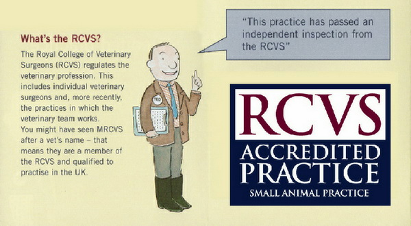 What is the RCVS?